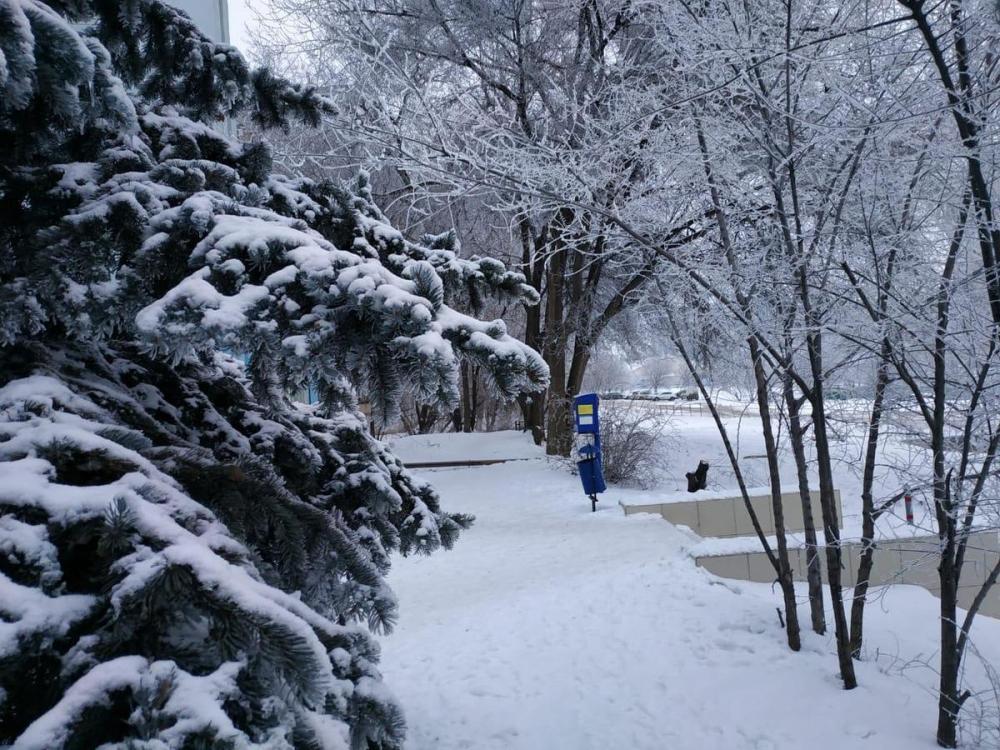 В Волгоградской области ожидается 20-градусный мороз