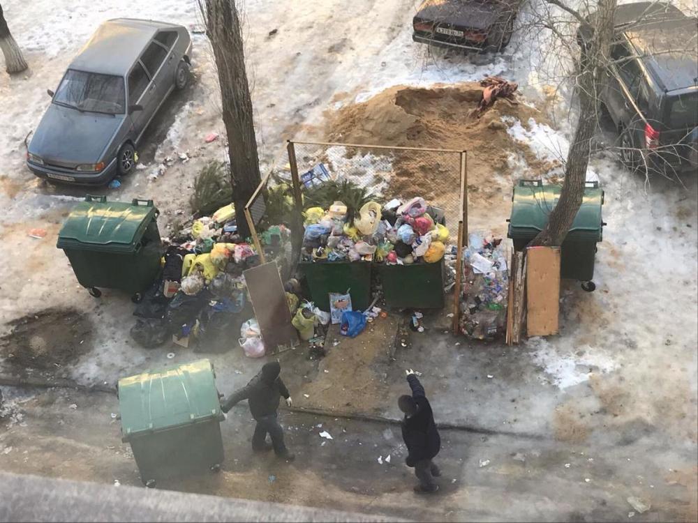 Волгоградцы могут воровать мусорные контейнеры, чтобы солить в них капусту, –  общественник о ситуации в городе