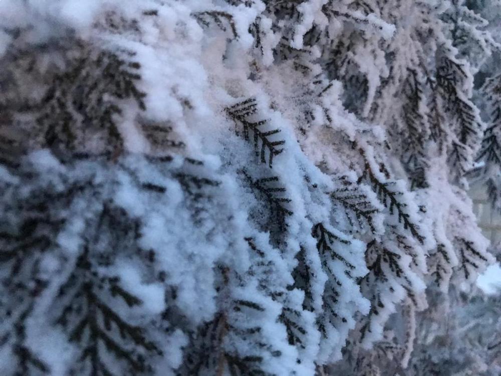 Из-за снегопада перекрыты дороги в Волгоградской области