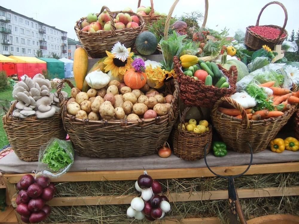 В Волгограде можно забронировать место для торговли на ярмарке через интернет