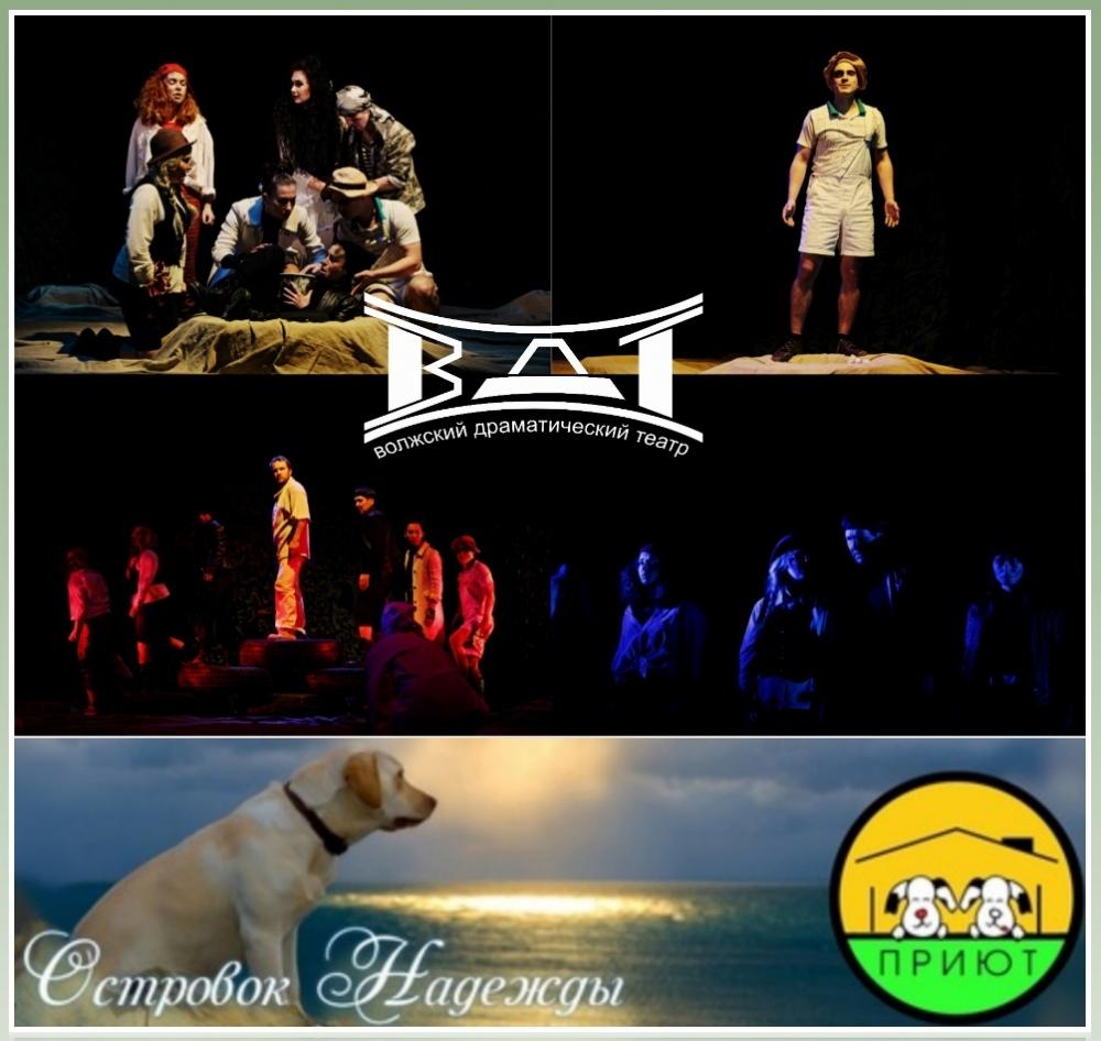 В Волжском меняют корм для собак на билеты в театр