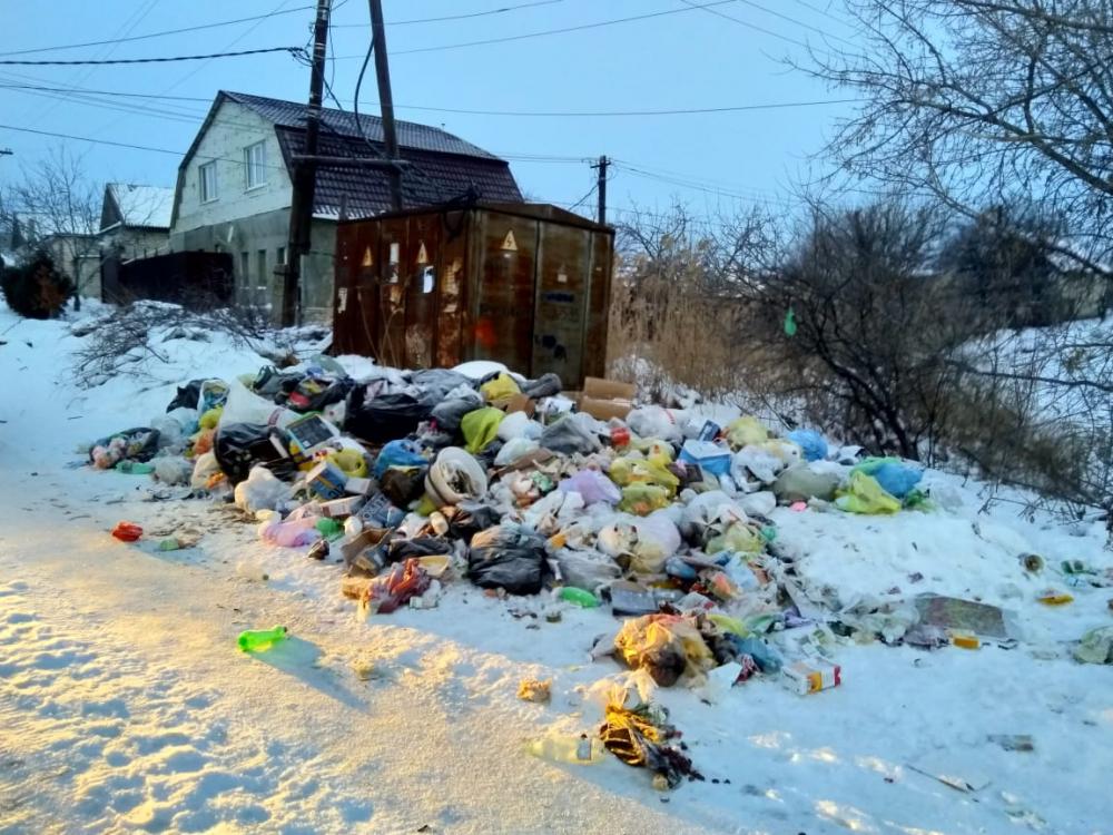 ЛДПР Волгоград: «Нормативы по вывозу мусора должны быть пересмотрены»