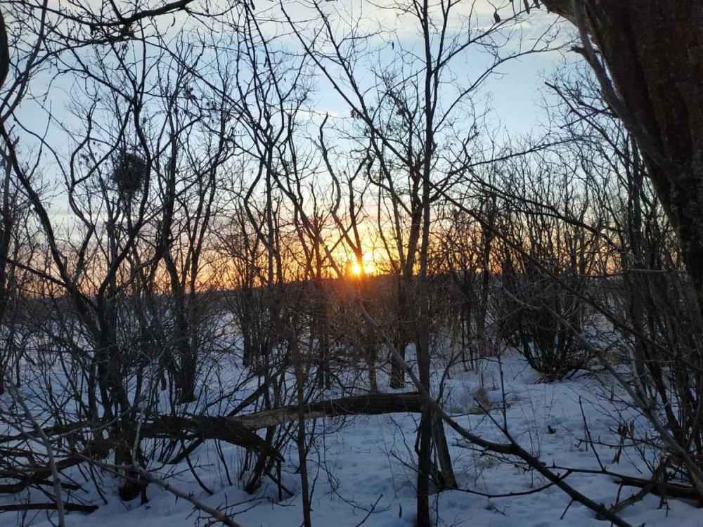 Волгоград продолжит тонуть в мокром снеге