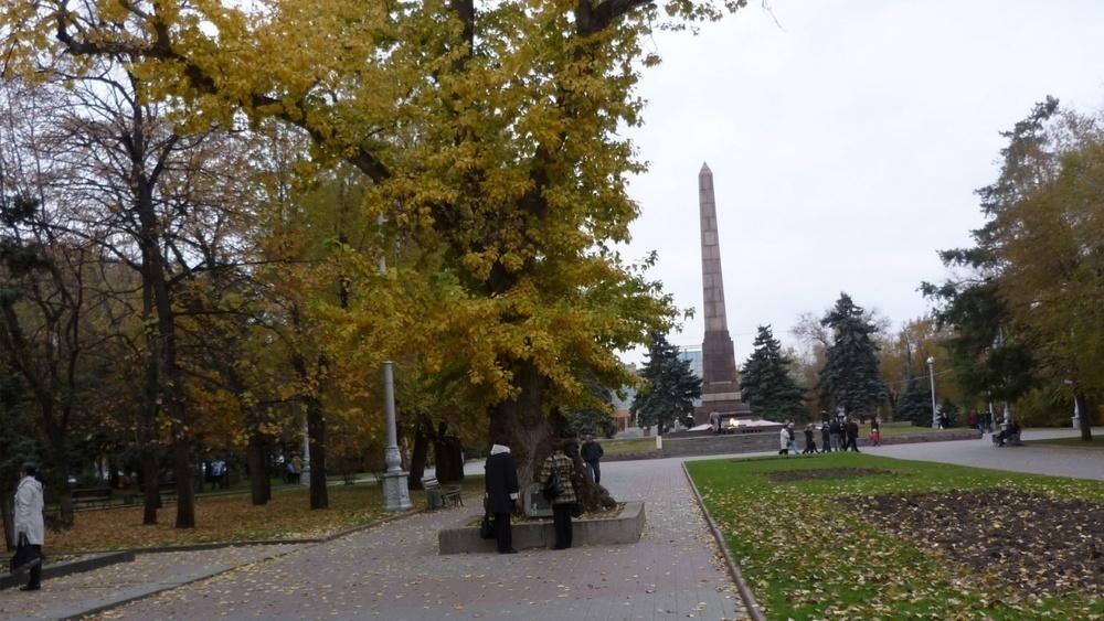 В Волгограде высадили клонированный Сталинградский тополь