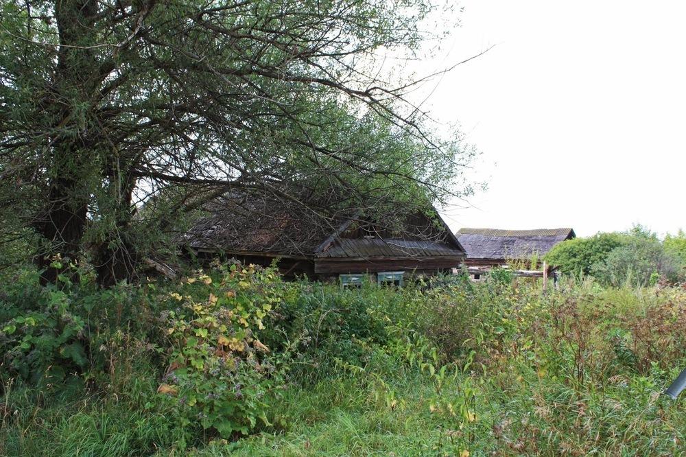 Четыре месяца держал у себя дома труп житель Серафимовича