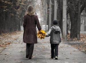 Детский сад моего сына уже «проводил», а школа не принимает, - жительница Волгограда