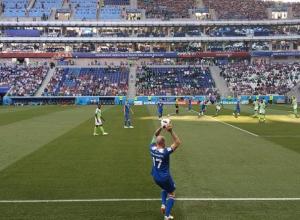 Матч Нигерия-Исландия проходит без участия знаменитой волгоградской мошки