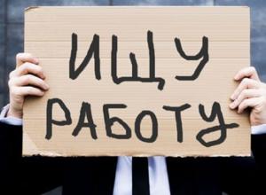 В Волгоградской области снова пересчитали безработных