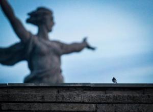 Девушка разбила голову о гранитные ступени Мамаева кургана в Волгограде