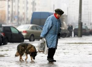 Моя бабушка пропала месяц назад, а полиция бездействует, - жительница Волгограда