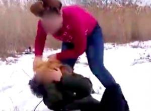 Гражданский активист обратился в генпрокуратуру с просьбой разобраться в жестокой драке школьниц под Волгоградом
