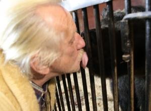 Смертельно опасный поцелуй медведя попал на видео в Волгограде