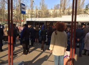 Третий день без маршруток: автобусы не справляются с потоком пассажиров в Волгограде