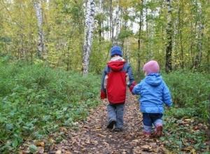 10-летняя девочка и ее 8-летний брат всю ночь искали дорогу домой под Волгоградом
