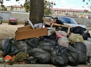 Волгоградские депутаты хотят большими штрафами отбить желание мусорить