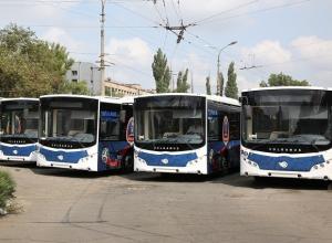 Волгоградцы стали реже ездить на автобусах