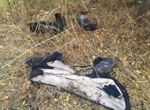 Полицейские искали похитителя ковра, а раскрыли убийство под Волгоградом