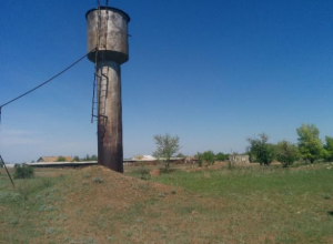 Жителей хутора под Волгоградом заставляют пить воду с птичьим пометом