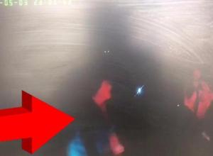 Нападение матери лихача на полицейских попало на видео под Волгоградом