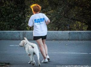 Безработный депутат уступил свой мандат в Волгоградской гордуме миллионеру