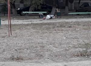 «Спящая красавица» обнаружена между двумя урнами на юге Волгограда