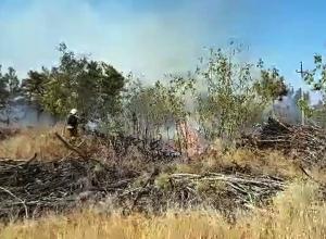 В Волгограде лесной пожар  угрожает табачной фабрике