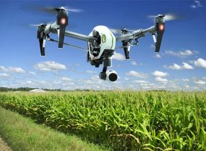 Волгоградских фермеров налоговые органы будут «вычислять» при помощи беспилотников