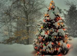 Волгоградские чиновники анонсировали более 100 праздничных мероприятий на Новый год