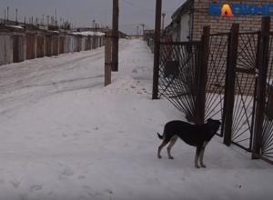 Мужчина замерз насмерть в пяти метрах от дома в Волгоградской области