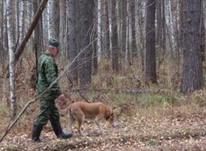 В Волгоградской области разрешили охотиться на дичь
