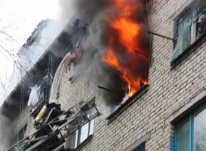 Бабушка, собака и кошка сгорели в квартире в Волгограде