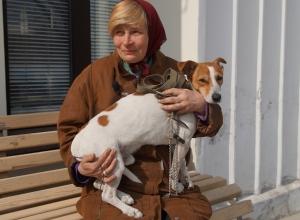 В Волгограде беженку из Донбасса смог принять только приют для бездомных животных