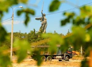 Рабочие на Мамаевом кургане оберегают дерево, высаженное волгоградцем на месте уничтоженного парка вдов
