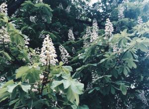 Похолодание началось в Волгоградской области