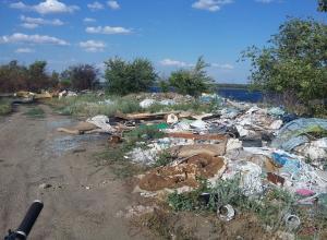 Волгоградец предложил привлечь японцев для борьбы с мусором возле ТРЦ «Акварель»