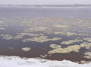 Волгоградцев испугал зеленый лед, плывущий по Волге