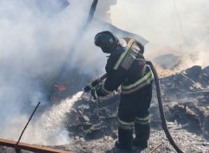 Обугленное тело обнаружено на пепелище в Волгограде