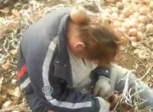 Отморозки сняли на видео глумление над пьяной женщиной на полях под Волгоградом