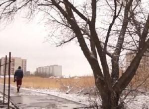 Дожди со снегом ожидаются в Волгоградской области