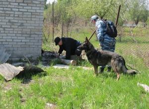 Трое мертвых мужчин обнаружены на даче в Камышине