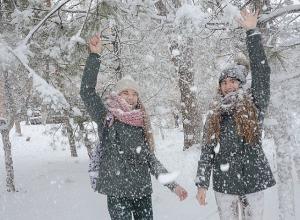 В Волгоград идут 10-градусные морозы и снегопад