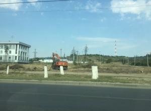 В Волгограде полностью вырублен парк на Мамаевом кургане