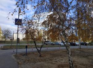 В Волгограде заканчивается теплая погода