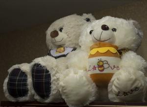 Половина рожденных за сутки в перинатальном центре Волгограда детей оказались двойняшками