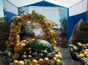 Горожан приглашают в выходные на ярмарку «Дары земли волгоградской»