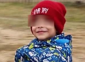 Дело об убийстве возбуждено после пропажи четырехлетнего глухонемого мальчика в  Михайловке
