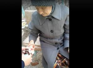 Бездомная собака покусала пенсионерку в центре Волгограда