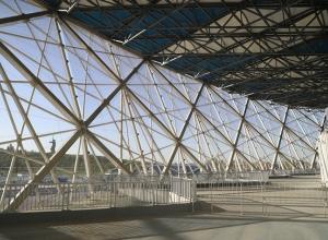 Ивалиды-колясочники смогут бесплатно посетить любой матч на стадионе «Волгоград Арена»