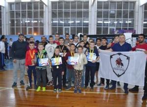 Спортсмены из Волгограда взяли 10 золотых медалей на боях без правил
