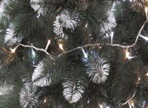 Где в Волгограде можно к Новому году купить живую ель и сосну